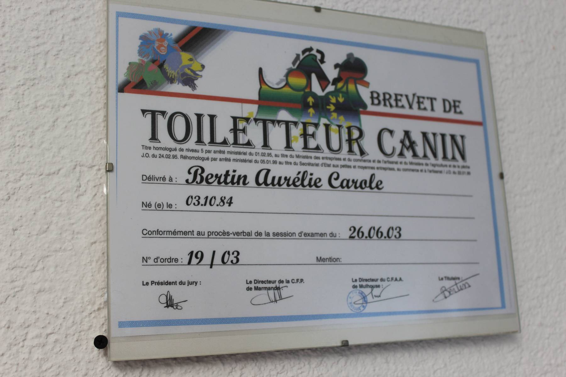 Toiletteur canin